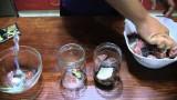 Консервированный сазан в томате