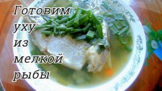 Уха из мелкой рыбы